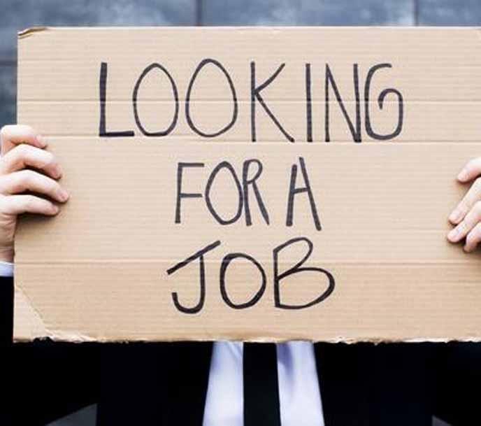 job-seeker.jpg