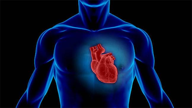 myocarditis-radang-jantung.jpg